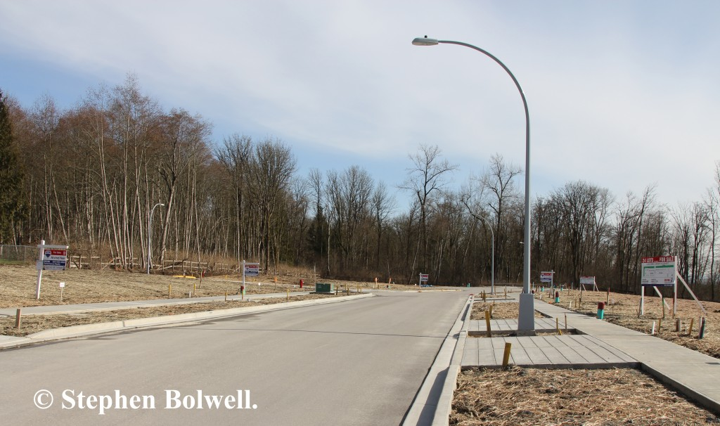 A woodland disappears to urban development only a short walk from the eagles nest.