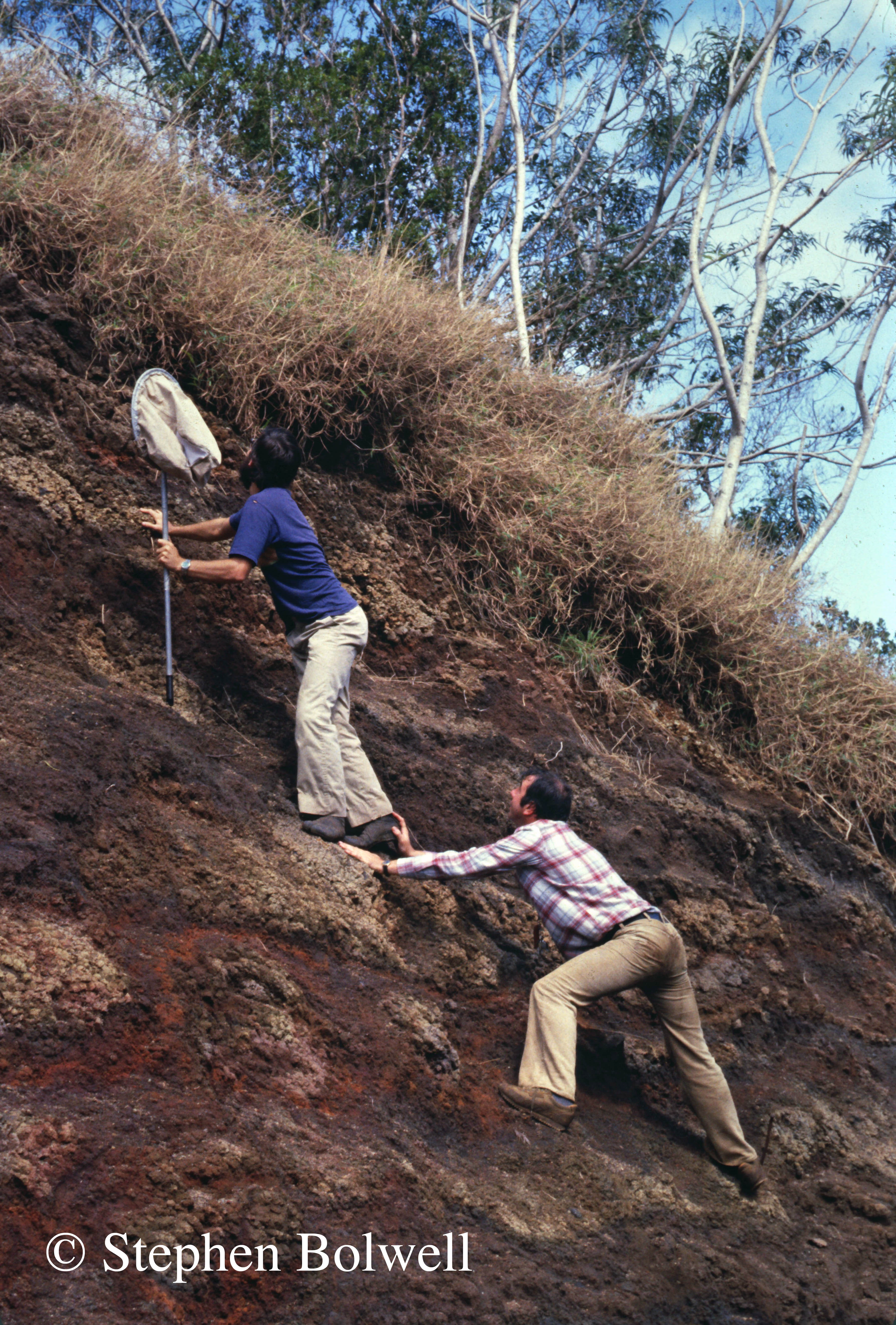 Roger Jones supporting Steve Montgomery (with the net) collecting specimens for filming in 1980.