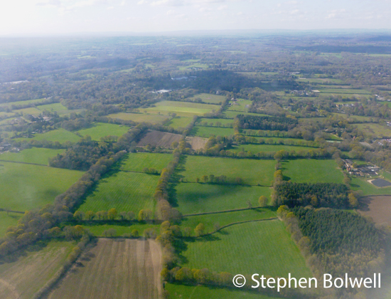 London isn't so far away from Gatwick Airport and yet the fields on the approach seem oddly from an earlier time and I imagine the shadows of spitfires ghosting defiantly across them.