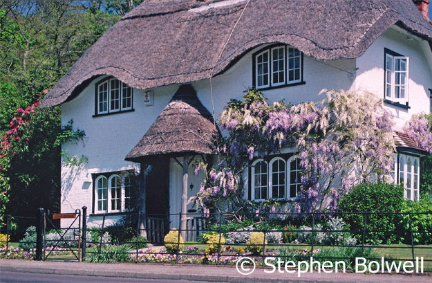 It is difficult to make the case for modernity, when there are cottages as beautiful as this one near Lyndhurst. I am guessing it was named Bee Hive Cottage because of the similarity of the thatch over the door to a traditional straw beehive.
