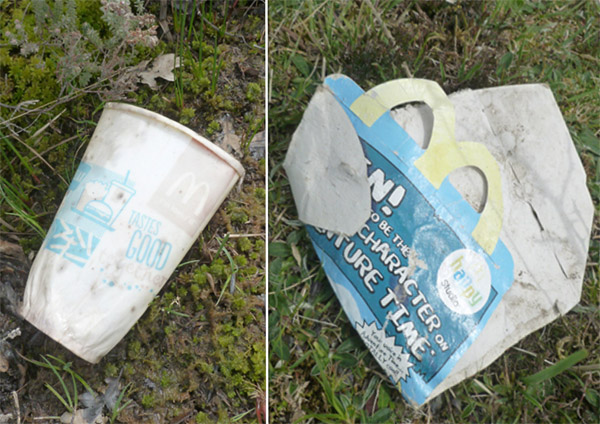Back on the Forest I'm still finding litter. Fast food packaging forms a major part go it, and judging by how washed out these containers are some have been out on the open heath for some time.