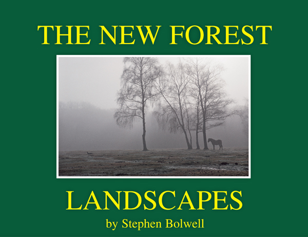 The Landcacpes of The New Forest. A look at the seasons of the Forest over the last twenty five years of the 20th Century.