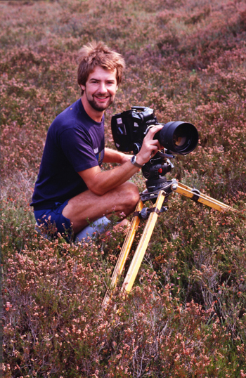 When I was filming for the BBC back in the 1980s the heathlands were healthier - that's not to say that there is no mature heather now, but back then it was certainly more extensive and less damaged and in places I deep enough to hide in order to film birds.