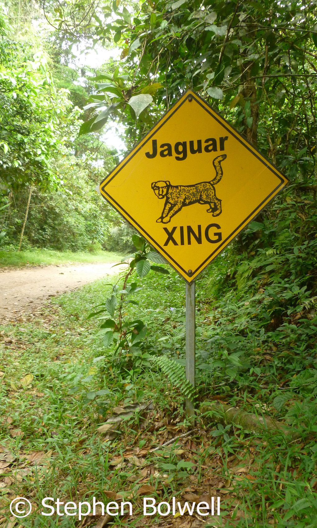 On the way into what is said to be the first Jaguar preserve in existence, we see this sign. I slow down, because jaguars can no doubt read and will crossing here.