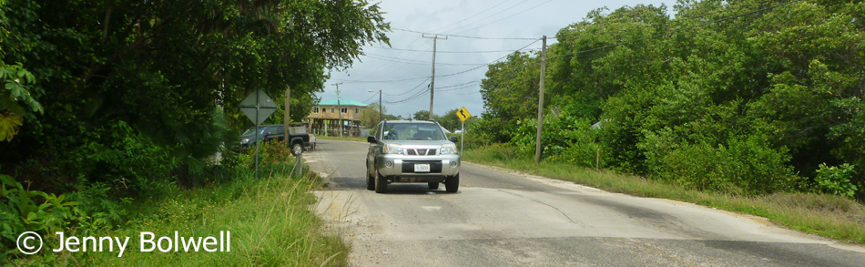 The Belizian speed hump can provide a surprise equal to any theme park ride.