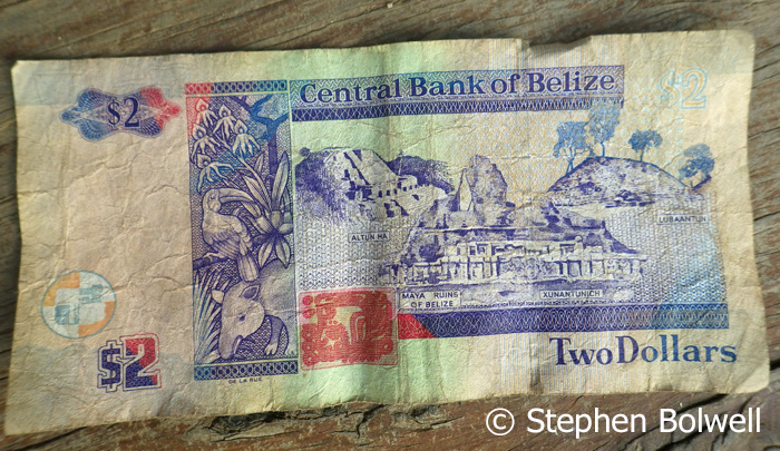 Belize money is visually agreeable, but I never saw any that wasn't worn out.