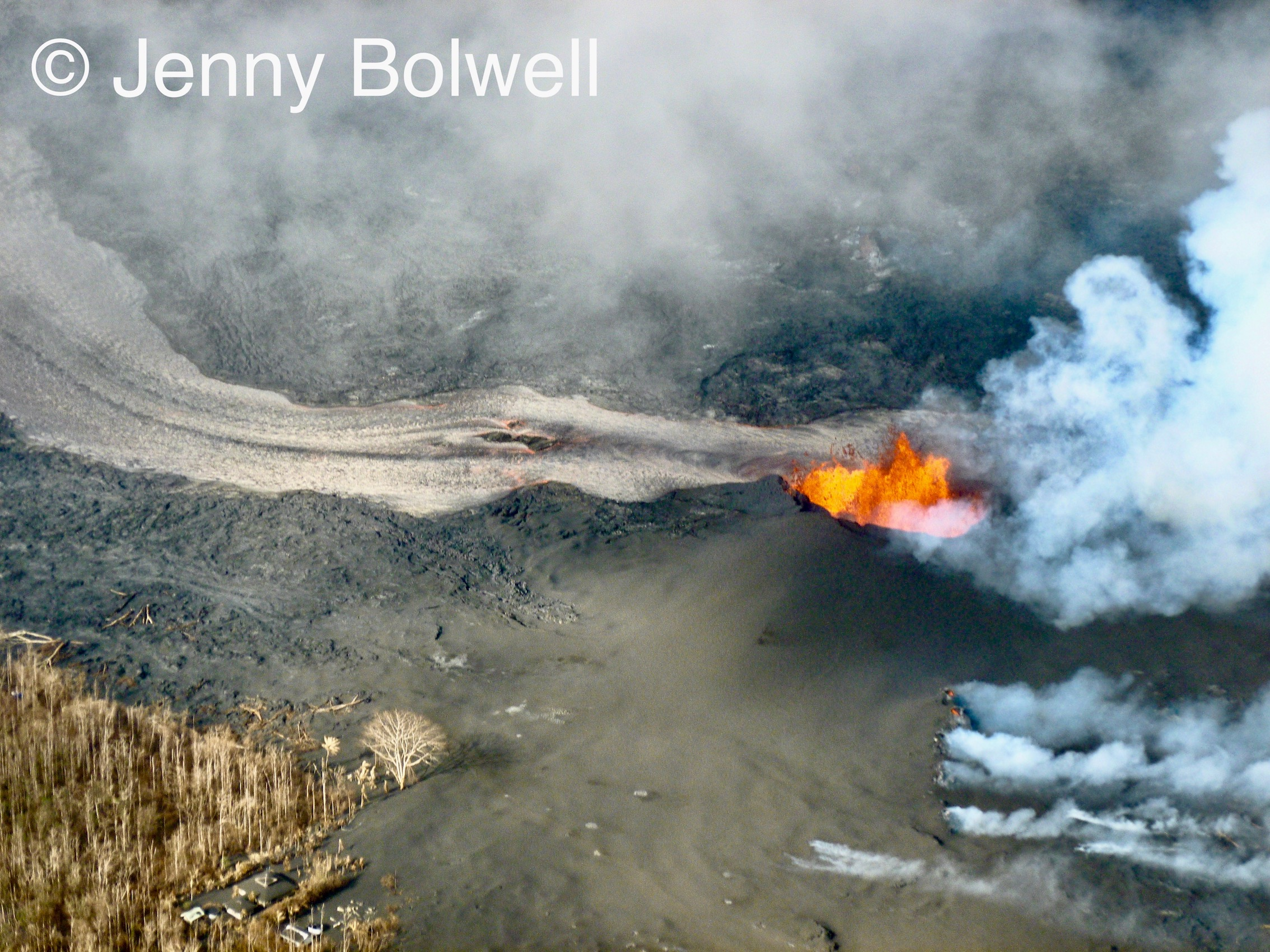 Jen's wider picture of Fissure 8 puts the lava flow into context with its surroundings.